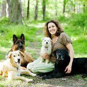 sarah hodgson and 3 dogs
