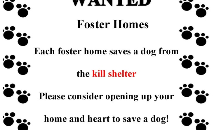 A New Chance Animal Rescue Foster Flyer-page-001