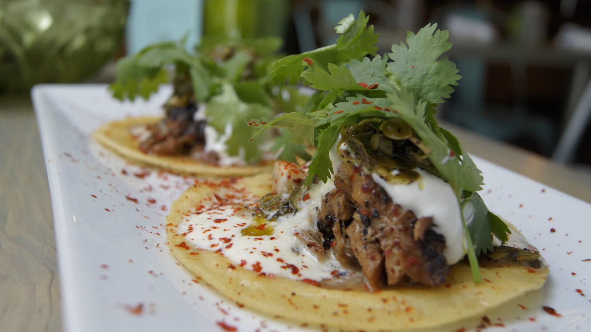 New in the hamptons north sea tavern raw 39 r bar for Fish taco aioli