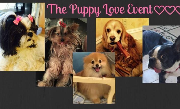 puppy love event at lv2bfit ryebrook