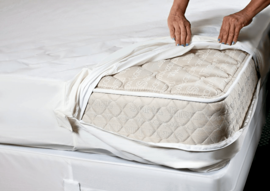 Bed Bug Mattress Covers What You Need To Know Stacyknows