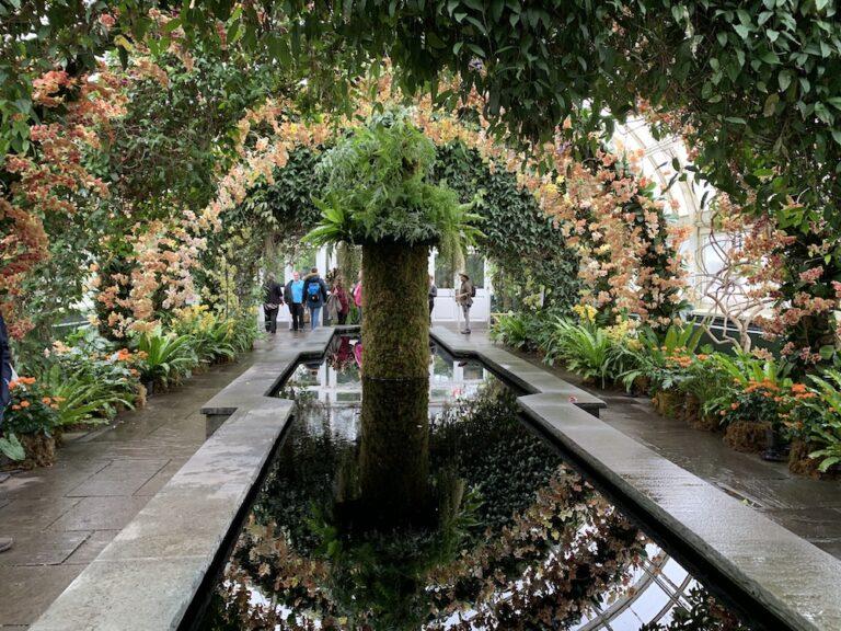 The Orchid Show Jeff Leatham S Kaleidoscope At New York Botanical