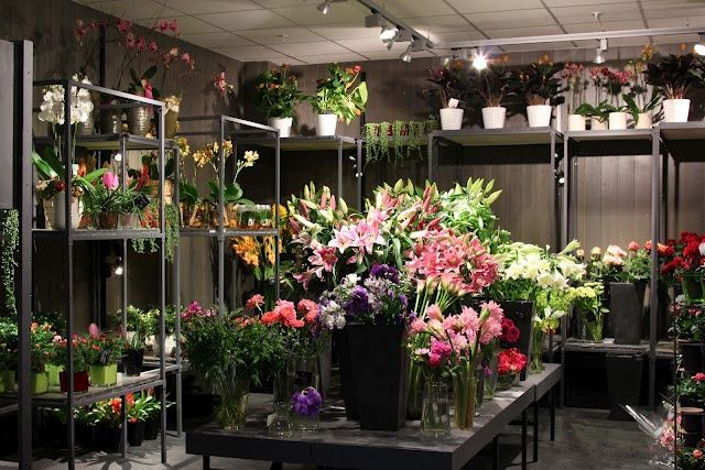 Image result for How to Make Your Flower Bouquet Look Valuable